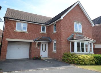 Thumbnail 4 bed detached house to rent in Fuchsia Grove, Shinfield, Reading