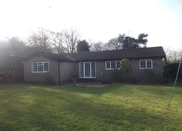 Thumbnail 3 bedroom bungalow to rent in Westsyde, Ponteland, Newcastle Upon Tyne