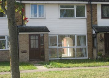 Thumbnail 3 bed terraced house to rent in East Bergholt, Manningtree