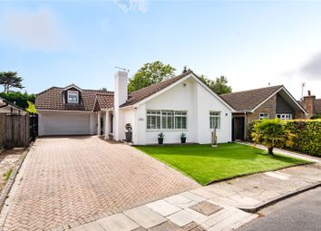 Thumbnail 3 bed detached bungalow for sale in The Beeches, Brighton, East Sussex