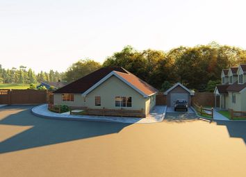 Thumbnail 3 bed detached bungalow for sale in Aingers Green Road, Great Bentley, Colchester