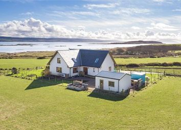 Thumbnail 4 bed detached house for sale in Isle Of Gigha