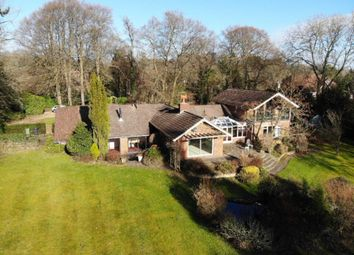 Thumbnail 5 bed detached house to rent in Wellhouse Road, Beech, Alton