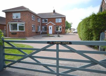 Thumbnail 4 bed property for sale in Sea Dyke Way, Marshchapel, Grimsby