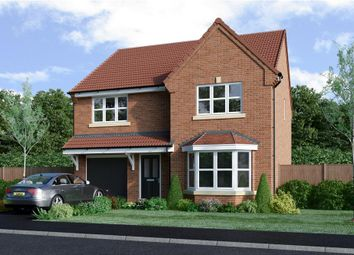 """Thumbnail 4 bedroom detached house for sale in """"Tressell"""" at Milby, Boroughbridge, York"""