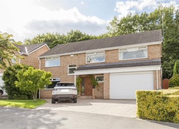 Thumbnail 5 bed detached house for sale in Chartwell Avenue, Wingerworth, Chesterfield