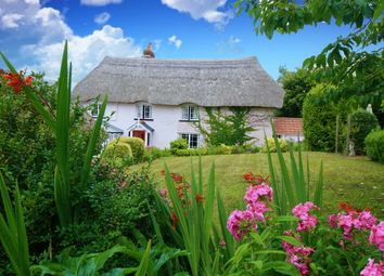 Thumbnail 5 bed cottage for sale in Whimple, Exeter