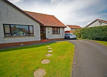 Thumbnail 2 bed semi-detached bungalow for sale in Portview Court, Portavogie, Newtownards, County Down