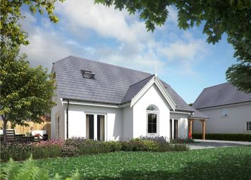 Thumbnail 3 bed detached house for sale in Portman Road, Pimperne, Blandford Forum