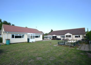 Thumbnail 4 bed detached bungalow for sale in Cantley, Norwich