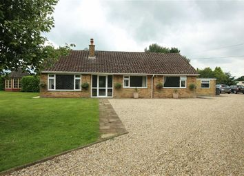 Thumbnail 4 bed bungalow for sale in North Willingham, Market Rasen