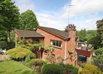 Thumbnail 3 bed detached house for sale in Guildford Road, Westcott, Dorking