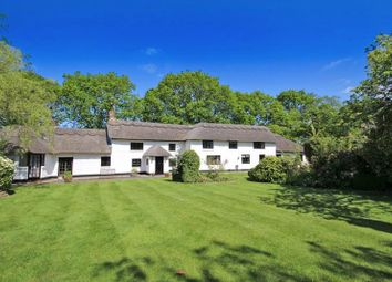 Thumbnail 4 bed detached house for sale in Stouts Lane, Bransgore, Christchurch