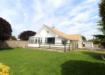 Thumbnail 3 bed detached bungalow for sale in Lyme Close, Axminster, Devon