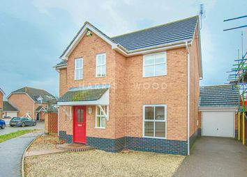 Thumbnail 4 bed detached house to rent in Edward Marke Drive, Langenhoe, Colchester