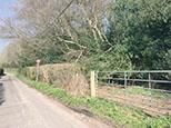 Thumbnail Land for sale in Wilderness Lane, Hadlow Down, Uckfield