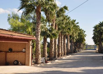 Thumbnail 12 bed villa for sale in 03158 Catral, Alicante, Spain