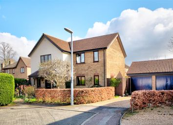 Thumbnail 4 bed detached house for sale in Thirlby Gardens, Ely