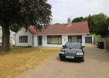Thumbnail 4 bed detached bungalow to rent in Cranemoor Avenue, Highcliffe, Christchurch
