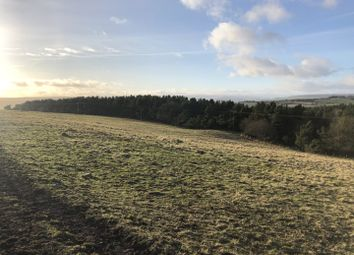 Thumbnail Land for sale in Thornley Road, Tow Law, Bishop Auckland