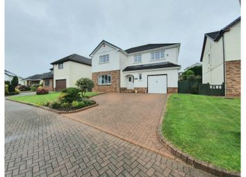 Thumbnail 5 bed detached house to rent in Penymorfa, Carmarthen