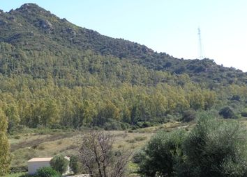 Thumbnail Land for sale in Costa Rei, Castiadal