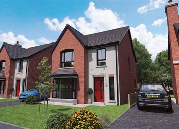 Thumbnail 4 bedroom detached house for sale in 13, Royal Ascot Mews, Carryduff