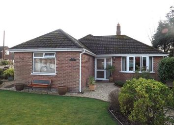 Thumbnail 3 bed bungalow for sale in Greenways Road, Brockenhurst