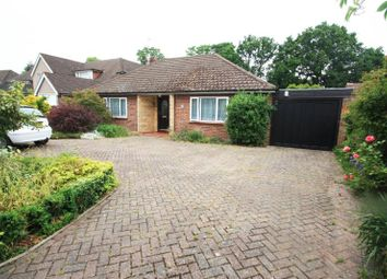 Thumbnail 2 bed detached bungalow to rent in Silver Birch Close, Woodham