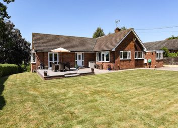 Thumbnail 4 bed detached bungalow for sale in Kimbolton, Herefordshire