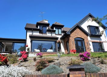 Thumbnail 5 bedroom detached house for sale in Larcom Drive, Londonderry