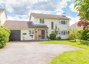 Thumbnail 3 bed detached house for sale in Puddington, Tiverton