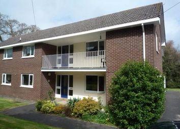 Thumbnail Studio to rent in Farringdon, Exeter