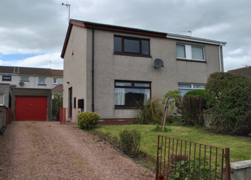 Thumbnail 2 bed semi-detached house to rent in 6 Beechwood Road, Arbroath