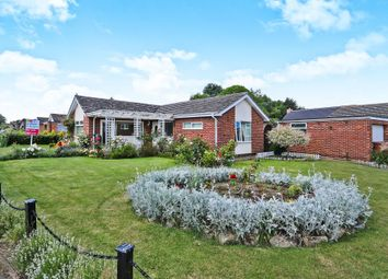 Thumbnail 2 bed detached bungalow for sale in Beech Avenue, Attleborough