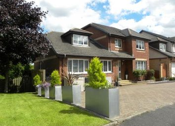 Thumbnail 5 bed detached house for sale in Campsie View, Cambuslang
