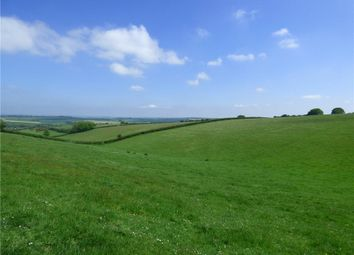 Thumbnail Land to rent in Winterborne Stickland, Blandford Forum