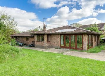 Thumbnail 4 bed bungalow for sale in Spring Hill, Little Staughton, Bedford
