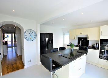 Thumbnail 4 bed detached house to rent in Crescent Drive North, Brighton