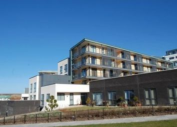 Thumbnail 2 bed flat to rent in Ionian Heights, Brighton