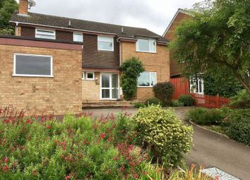 Thumbnail 4 bed detached house to rent in Hillside, Daventry