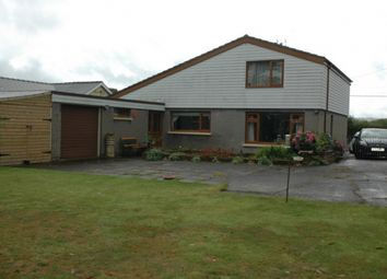 Thumbnail 4 bed detached house for sale in Llechryd, Llechryd, Ceredigion