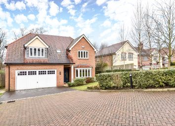 Thumbnail 5 bed detached house to rent in Holmoak Close, Purley