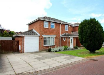 Thumbnail 3 bedroom detached house to rent in Shipton Close, Boldon Colliery