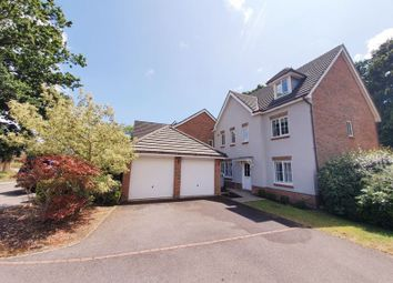 Thumbnail 6 bed property to rent in Fern Way, Titchfield, Fareham
