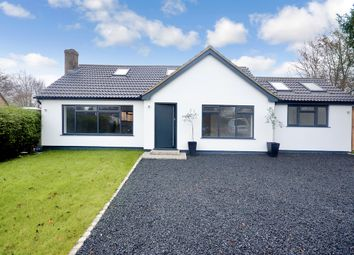 Thumbnail 4 bed detached bungalow for sale in The Hopgrounds, Finchingfield, Braintree