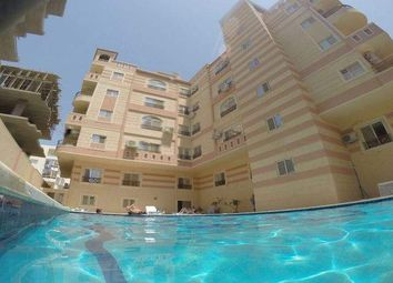 Thumbnail 3 bed apartment for sale in 185 El Kawser Area, Front Of Hurghada Airport, Hurghada, Red Sea, Hurghada, Red Sea Governorate 84511, Egypt