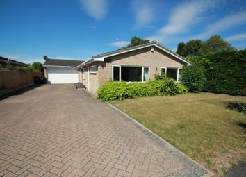 Thumbnail 5 bed bungalow to rent in Firgrove, St. Johns, Woking