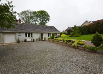 Thumbnail 3 bed detached bungalow for sale in Camrose, Haverfordwest