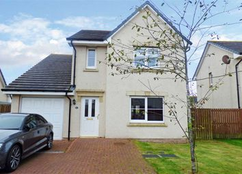 Thumbnail 4 bed detached house to rent in Craigleith Drive, Portlethen, Aberdeen